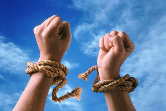 Chuyện châu chấu, trâu và người: Chúng ta đều có một nhà tù vô hình, và chẳng mấy ai dám thoát ra khỏi đó - Ảnh 3.