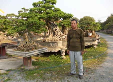 Mãn nhãn với những vườn cây tiền tỉ - Ảnh 3.