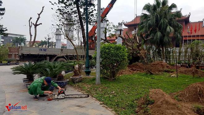 Phó chủ tịch TP Thái Bình: Vườn hoa tan hoang, tôi cũng sốt ruột - Ảnh 3.