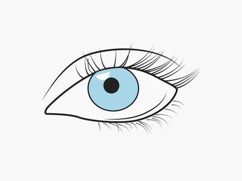 Không muốn đôi mắt chóng tàn vì màn hình máy tính, hãy tập ngay 4 thói quen sau - Ảnh 2.