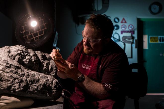 Phát hiện một hóa thạch khủng long được bảo quản đặc biệt tốt ở Alberta, trông giống hệt như đang còn sống - Ảnh 3.