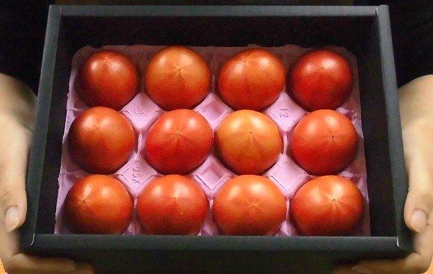 Biếu sếp quả cà chua Hoàng gia Nhật: Đắt nhất thế giới, 1,6 triệu/kg - Ảnh 3.