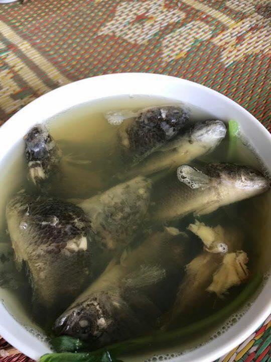 Chồng thèm ăn canh cá rô nấu rau cải, vợ tức tốc nấu như này, bạn có dám ăn không? - Ảnh 3.