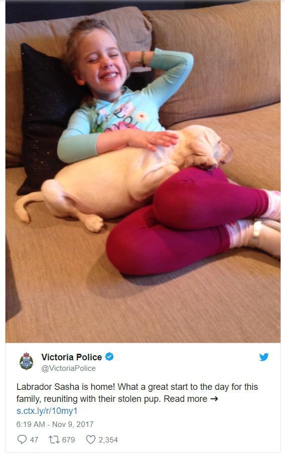 Mủi lòng thương bé gái 4 tuổi, tên trộm khoắng cả nhà nhưng sau đó trả lại thứ giá trị nhất của gia đình - Ảnh 3.