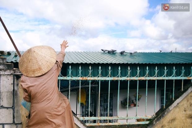Hồng nhan thời trẻ nhưng về già chẳng chồng con, cụ bà 83 tuổi bầu bạn với thú hoang nơi phố núi Đà Lạt - Ảnh 23.