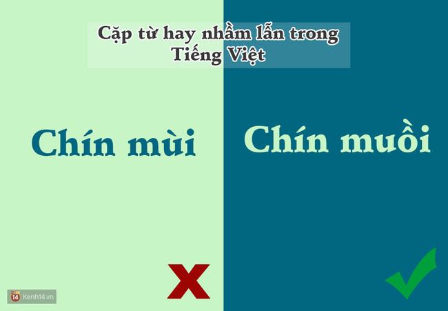 10 cặp từ ai cũng hay bị lẫn lộn trong Tiếng Việt - Ảnh 4.