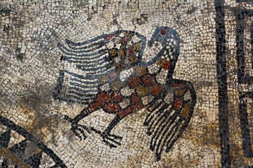 Tìm thấy nhiều tấm khảm bí ẩn, vết tích của một thành phố La Mã cổ đại bị chôn vùi - Ảnh 3.
