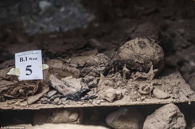 Khai quật mộ cổ Ai Cập 2300 năm tuổi - ít nhất 17 xác ướp cấp cao được tìm thấy - Ảnh 4.