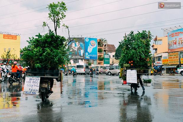 Trên đường phố Sài Gòn, có những người hàng chục năm chở theo một chợ xanh sau yên xe máy - ảnh 4