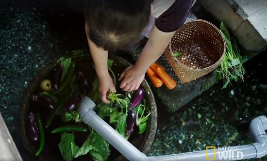 Người Nhật khiến cả thế giới thán phục vì rửa bát, rửa rau ngay ở kênh nuôi cá - Ảnh 4.