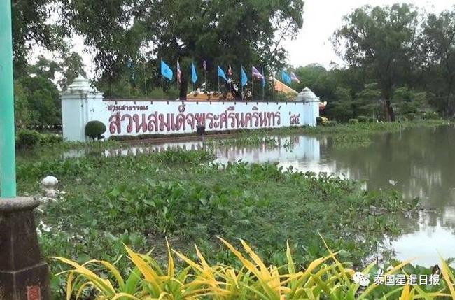 Thái Lan: Mặc kệ mưa lũ, người dân vô tư xẻ thịt cá sấu sổng chuồng giữa dòng nước - Ảnh 5.