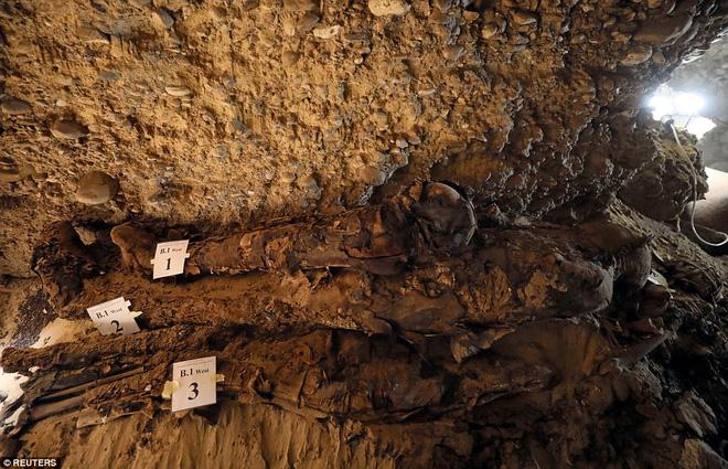 Khai quật mộ cổ Ai Cập 2300 năm tuổi - ít nhất 17 xác ướp cấp cao được tìm thấy - Ảnh 5.