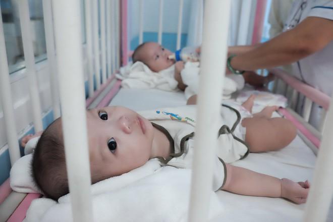 Bé trai bị vứt ở lề đường, kiến lửa bò đầy miệng, 7 tháng trời nằm trong bệnh viện ở Sài Gòn - Ảnh 5.
