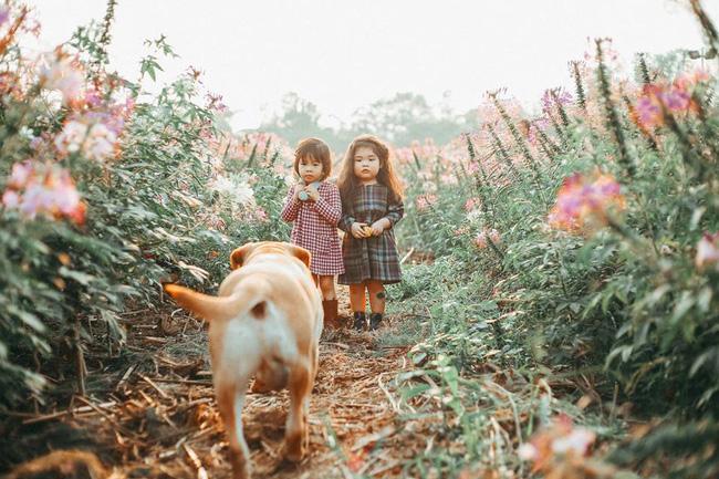 Khuôn mặt sợ chó siêu đáng yêu của cô bé má phính Hà Nội ăn đứt Vô Diện lạnh lùng - Ảnh 6.