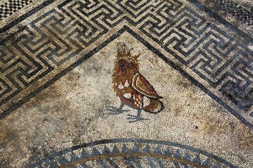 Tìm thấy nhiều tấm khảm bí ẩn, vết tích của một thành phố La Mã cổ đại bị chôn vùi - Ảnh 5.