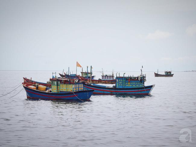 Thăm Ghềnh Đá Đĩa, thưởng thức hải sản đầm Ô Loan - 2 trải nghiệm nhất định phải làm khi ghé Phú Yên - Ảnh 6.