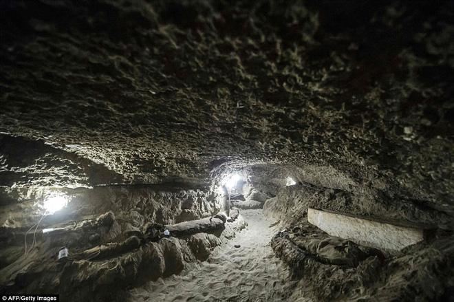 Khai quật mộ cổ Ai Cập 2300 năm tuổi - ít nhất 17 xác ướp cấp cao được tìm thấy - Ảnh 6.