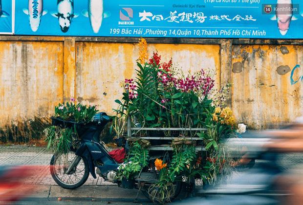 Trên đường phố Sài Gòn, có những người hàng chục năm chở theo một chợ xanh sau yên xe máy - ảnh 6