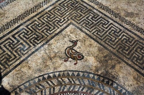 Tìm thấy nhiều tấm khảm bí ẩn, vết tích của một thành phố La Mã cổ đại bị chôn vùi - Ảnh 6.