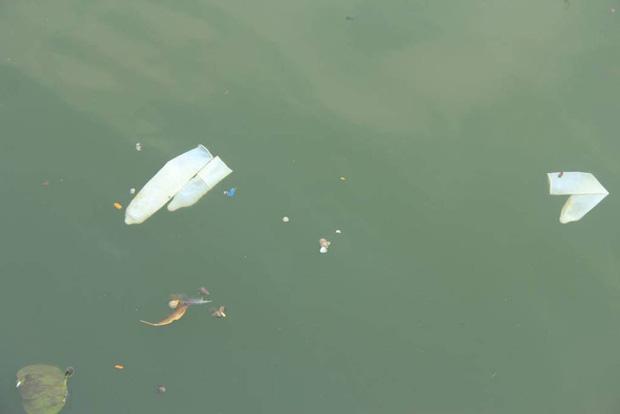 Hà Nội: Bao cao su nổi trắng một góc hồ Tây, người dân chèo thuyền ra vớt - Ảnh 7.