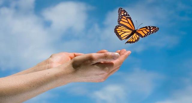 10 sự thật mà con người phải chấp nhận để cuộc sống không còn quá nhiều lo âu - Ảnh 7.