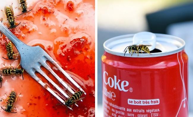 10 công dụng khó tin của Coca-Cola, số 2 nghe thì hay nhưng không nên thử - Ảnh 7.