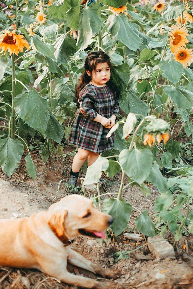 Khuôn mặt sợ chó siêu đáng yêu của cô bé má phính Hà Nội ăn đứt Vô Diện lạnh lùng - Ảnh 8.