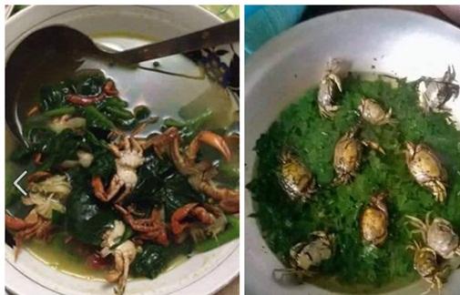 Chồng thèm ăn canh cá rô nấu rau cải, vợ tức tốc nấu như này, bạn có dám ăn không? - Ảnh 8.