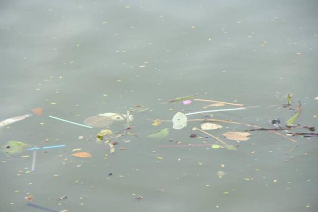 Hà Nội: Bao cao su nổi trắng một góc hồ Tây, người dân chèo thuyền ra vớt - Ảnh 8.