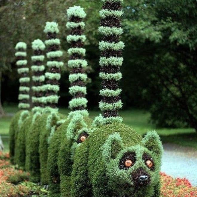 Những ý tưởng làm vườn có 1-0-2 đến các bác nông dân cũng phải
