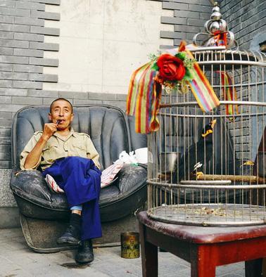 20 triệu dân Bắc Kinh sôi sục vì 1 người TQ dám nói Cố Cung 'không bằng chuồng lợn' 9