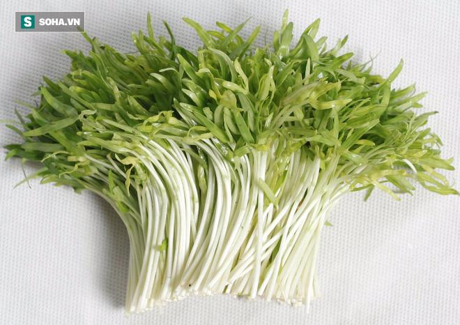 5 thực phẩm có tác dụng bảo vệ gan khoẻ mạnh cả đời: Có rất nhiều ở Việt Nam - Ảnh 3.