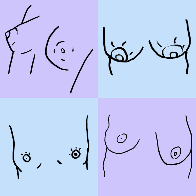 Tại sao bộ ngực chị em lại bên to bên nhỏ khiến 100% phụ nữ có bộ ngực lệch? - ảnh 1