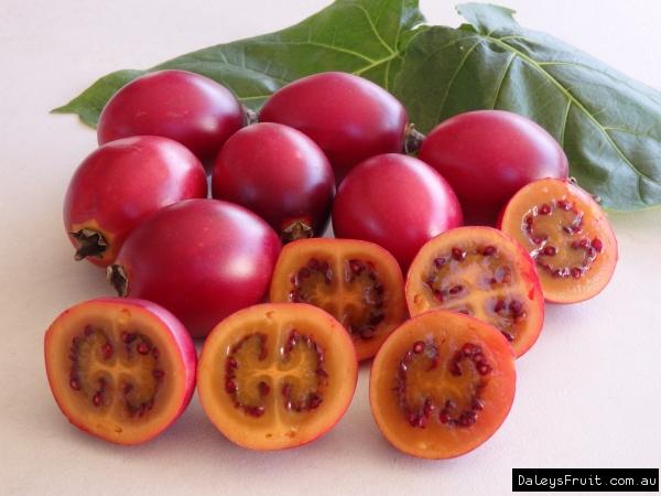 Cà chua giá 1 triệu đồng/kg gây sốt: Có gì bổ dưỡng mà giá cao ngất ngưởng? - Ảnh 2.