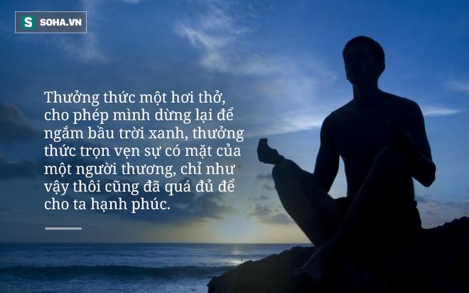 Thông điệp của Thiền sư Thích Nhất Hạnh gửi đến Liên Hiệp Quốc về vấn đề biến đổi khí hậu - Ảnh 2.