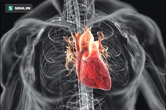 BV Hữu nghị Việt Đức: Cứu sống nam thanh niên mắc bệnh tim hiếm gặp, nguy cơ tử vong cao - Ảnh 1.