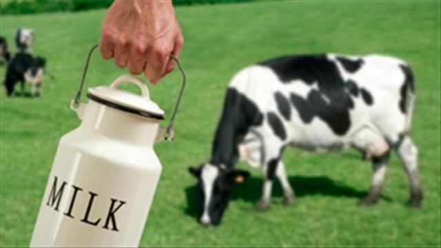Sữa bò tốt hơn hay sữa đậu nành tốt hơn? Đây là câu trả lời ai cũng cần biết - ảnh 2