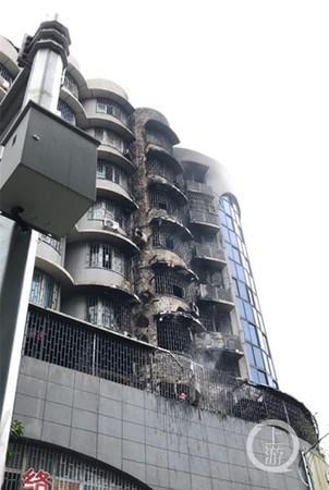 Tòa nhà chung cư bị thiêu rụi sau trận hỏa hoạn.