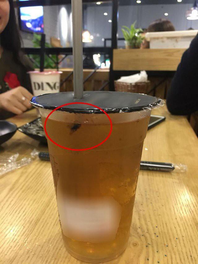 Lại thêm một tai nạn kinh hoàng với trà sữa: Khách phát hoảng vì uống luôn cả con gián, nhân viên vẫn tỉnh bơ - ảnh 3