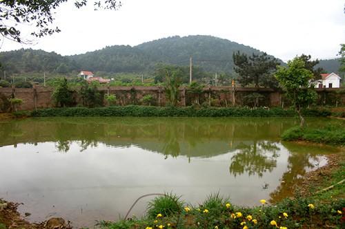 Cận cảnh biệt thự nhà vườn là công trình vi phạm lớn của diva Mỹ Linh - Ảnh 4.