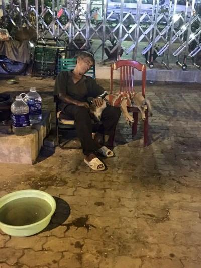 Chiếc xe ve chai trên đường phố Sài Gòn khiến ai đi qua cũng muốn nán lại ngắm nhìn - Ảnh 3.