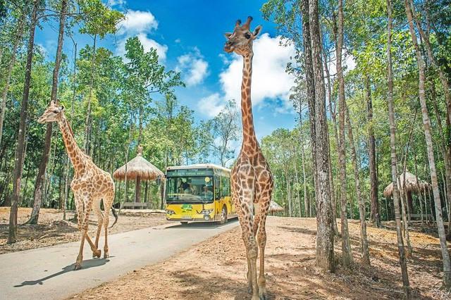 Hé lộ về dự án khu công viên vui chơi safari 1,5 tỷ USD của ông lớn BĐS Vingroup đối diện đại đô thị VinCity Ocean Park  - Ảnh 1.