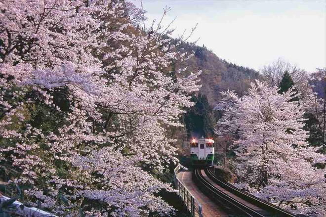 Tadami Line: Chuyến tàu hỏa nhỏ xinh nhất Nhật Bản, đi qua 4 mùa là 4 khung trời khác nhau - Ảnh 2.