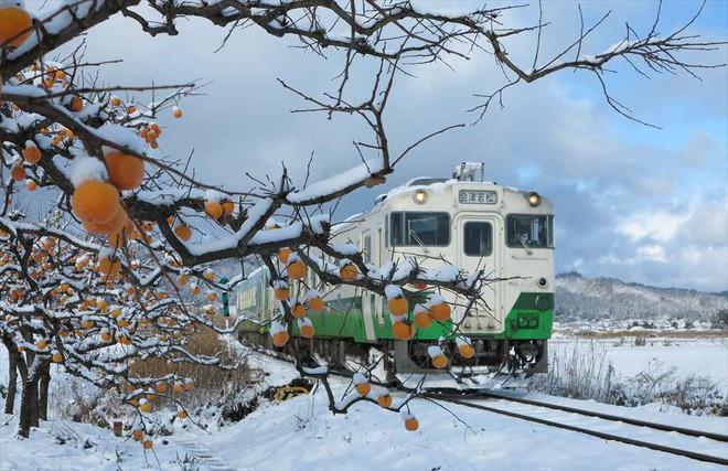 Tadami Line: Chuyến tàu hỏa nhỏ xinh nhất Nhật Bản, đi qua 4 mùa là 4 khung trời khác nhau - Ảnh 16.