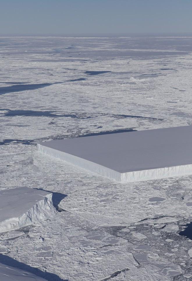 Làm thế nào mà tảng băng trôi vuông chằn chặn như thế này hả? - Ảnh 1.