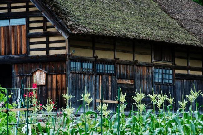 Những ngôi nhà an yên đẹp tựa tranh vẽ ở vùng nông thôn Nhật Bản - Ảnh 20.