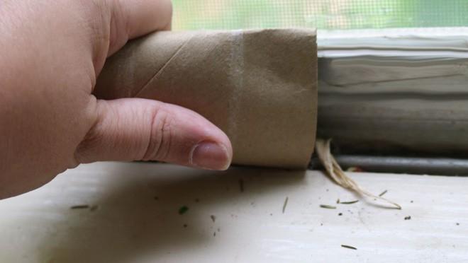11 công dụng bất ngờ của lõi giấy vệ sinh - Ảnh 10.