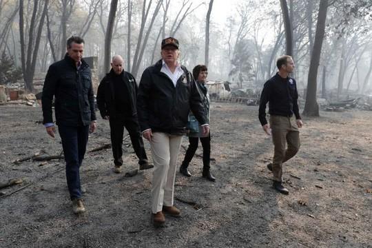 Nói Phần Lan cào cỏ khô để ngăn cháy rừng, ông Trump bị chế nhạo - ảnh 1