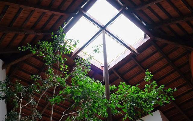 Ngôi nhà ngói ấm cúng như ngôi nhà nhỏ trên thảo nguyên của cặp vợ chồng giáo viên ở Lâm Đồng - Ảnh 9.