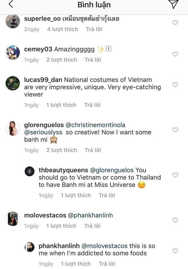 Trong khi khán giả Việt Nam tranh cãi, fan thế giới lại ủng hộ trang phục bánh mì của HHen Niê - Ảnh 4.